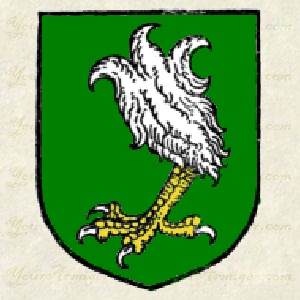 Coat of Arms, an eagle's leg erased à la quise