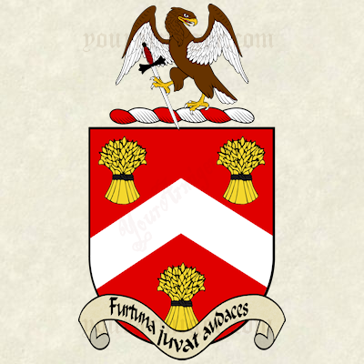 The coat of arms and family crest of Elizeus Barron