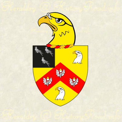 Coat of Arms with Anderson Family Crest