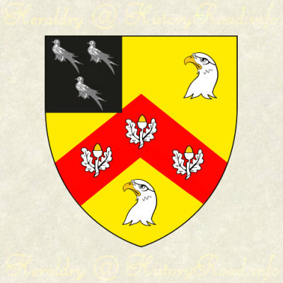 The Arms of John Anderson: Or, on a chevron Gules, between thee hawks' heads erased Argent, three acorns, slipped of the last, on a canton Sable, three martlets of the third.